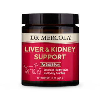 Liver and Kidney Support for Cats & Dogs